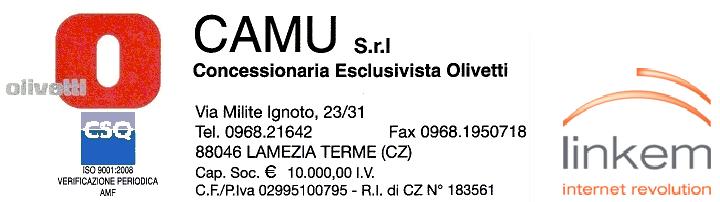 LOGO CAMU-LINKEM